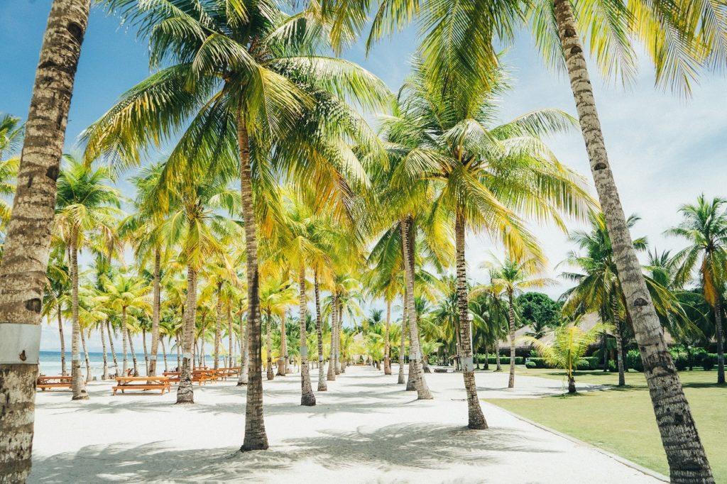 フィリピン留学 暑季 繁忙期